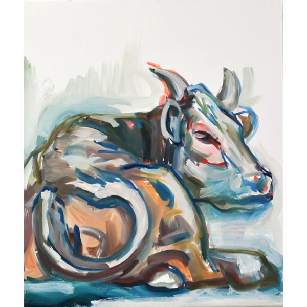 bunte Kuh, liegend, von hinten, sich umschauend