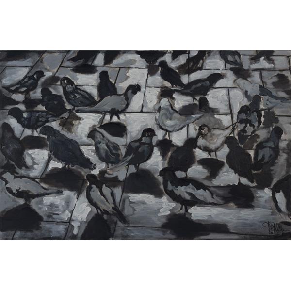 Viele Tauben auf Straßenpflaster