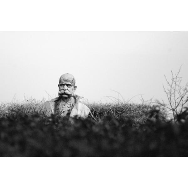 Kaiser Franz Joseph Statue am Cobenzl zwischen Büschen